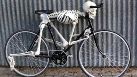 skelet-bike